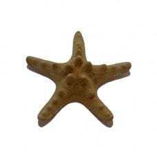 Морская звезда Jungle 4''