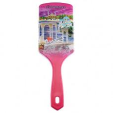 8586-20 Щетка для волос Евпатория роз